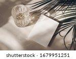 summer tropical stationery... | Shutterstock . vector #1679951251