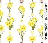 Yellow Crocuses Pattern....
