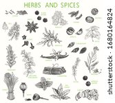 Herbs And Spices Hand Drawn Se...