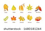 colored isolated autumn... | Shutterstock .eps vector #1680181264