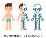 cartoon boy skeleton anatomy... | Shutterstock .eps vector #1680564277