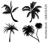 palm silhouette | Shutterstock . vector #168131525