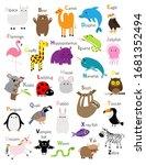animal zoo abc alphabet. cute... | Shutterstock .eps vector #1681352494