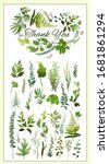 collection of green leaves... | Shutterstock .eps vector #1681861294