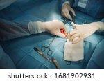 photo of surgeons hands during... | Shutterstock . vector #1681902931