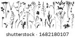 plants  bare wild weeds  big... | Shutterstock .eps vector #1682180107