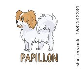 cute cartoon papillon dog breed ...   Shutterstock .eps vector #1682542234