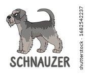 cute cartoon schnauzer dog...   Shutterstock .eps vector #1682542237