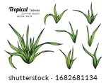 set of tropical leaf drawing... | Shutterstock .eps vector #1682681134
