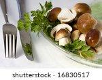 edible boletus - stock photo