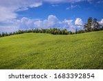 Mountain Meadow In Klastorisko...
