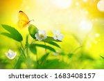 Beautiful Spring Floral Natural ...