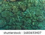 Rocky Sea Floor Bed and Crystal Clear Turquoise Water. Marine Theme. - stock photo