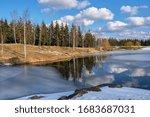 Spring Landscape. Forest Lake...