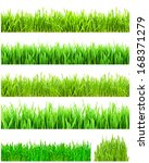 fresh green grass isolated on... | Shutterstock . vector #168371279
