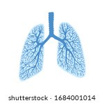 lungs   part of the human body  ... | Shutterstock . vector #1684001014