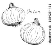 onion. whole vegetable. ink...   Shutterstock .eps vector #1684254481