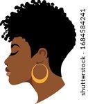 afro woman  american african... | Shutterstock .eps vector #1684584241
