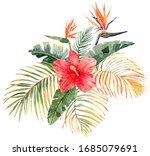 tropical bouquet. exotic plants ... | Shutterstock . vector #1685079691