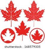 Maple Leaf. Isolated Maple On...