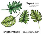 set of tropical leaf drawing... | Shutterstock .eps vector #1686502534