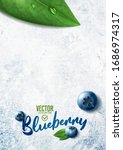 Vector Realistic Blueberry...