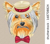 vector hipster dog yorkshire... | Shutterstock .eps vector #168708824