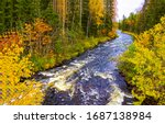 Autumn Forest River Wild...