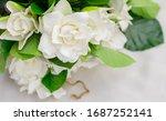 Close Up Image Of Gardenias...