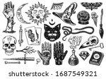 mystical magic boho elements.... | Shutterstock .eps vector #1687549321