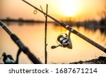 Carp fishing rod isolated on...