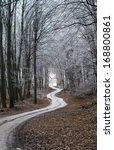 winter path | Shutterstock . vector #168800861
