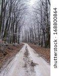 winter path | Shutterstock . vector #168800864