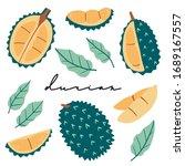 doodle durian vector set. hand... | Shutterstock .eps vector #1689167557