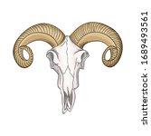 drawn skull of a mountain sheep ... | Shutterstock .eps vector #1689493561