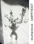 Small photo of Tine vase with cherry blossom branch casting shadows on a white surface. Spring vibes concept