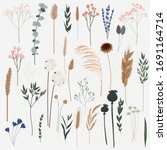 vector set of boho plants.... | Shutterstock .eps vector #1691164714