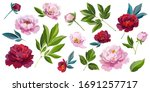 collection of leaves  buds ...   Shutterstock .eps vector #1691257717