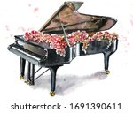 Black Grand Piano With Flowers...