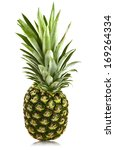 pineapple isolated on white... | Shutterstock . vector #169264334