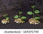 tress growing on coins   csr  ... | Shutterstock . vector #169291745