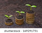 trees growing on coins   csr  ... | Shutterstock . vector #169291751