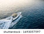 Speed boat in mediterranean sea ...