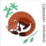 Red Panda Vector Illustration.  ...