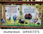 sochi  russia   sptember 27 ... | Shutterstock . vector #1693317271