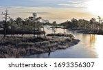 Sunrise In A Frozen Swamps...
