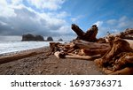 The wonderful beach of La Push at the Quileute Reservation