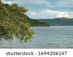 Nacascolo Beach  Tree And The...
