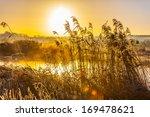 hoar frost at sunrise | Shutterstock . vector #169478621