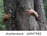 hand and tree | Shutterstock . vector #16947982